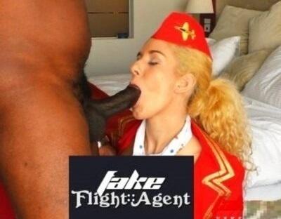 FakeFlightAgent.com – SITERIP