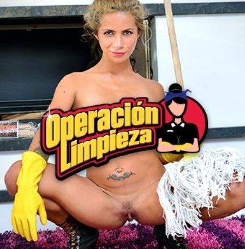 OperacionLimpieza.com – SITERIP