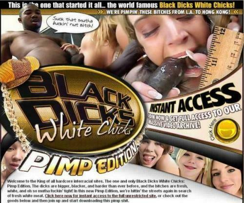 BlackDicksWhiteChicks.com – SITERIP