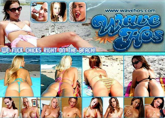 WaveHos.com – SITERIP