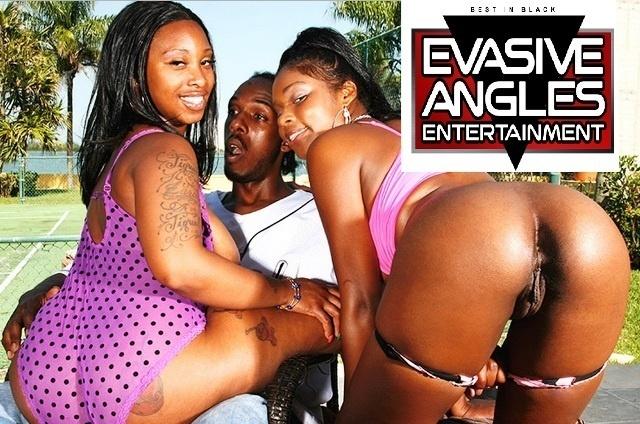 EvasiveAngles.com – SITERIP