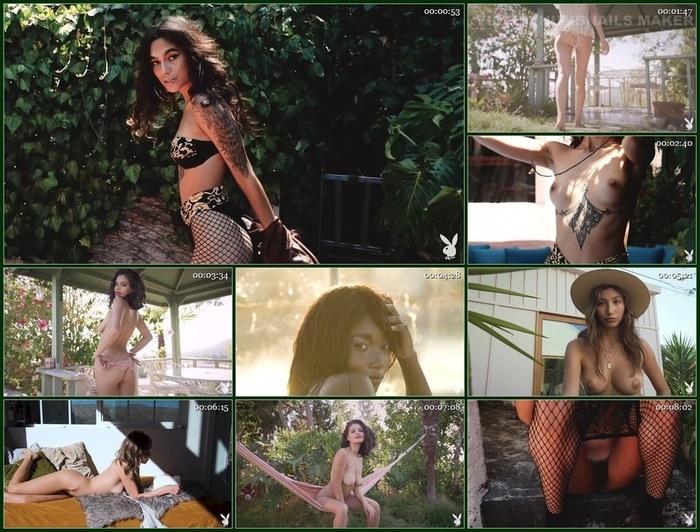 Playboy Plus – Playboy's Picks